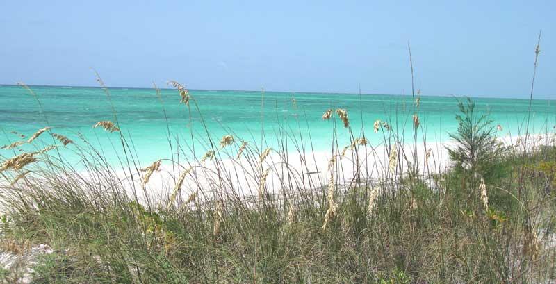 Taylor Bay Beach-by-Emerald-Shores-Estate