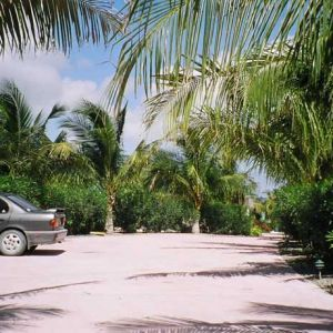 Emerald-Shores-Driveway-from-Guesthouse-to-Main-House